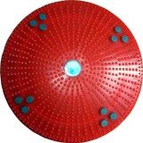 ANCS Acupressure Twister Body Weight Red...