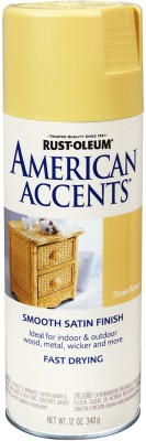 Rust-Oleum American Accents Straw Flower Spray Paint 340 ml
