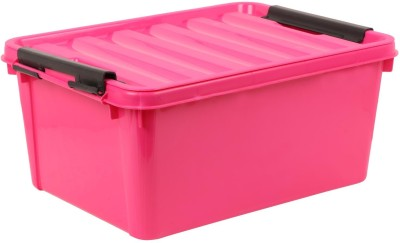 Buckle Up MULTIPURPOSE Storage Box
