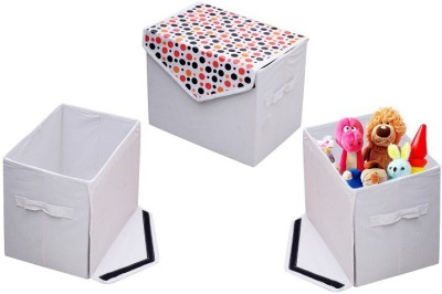 The Intellect Bazaar F Storage Box