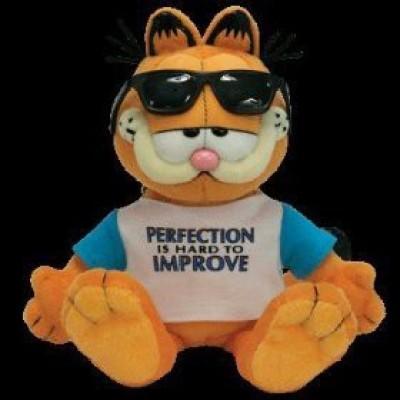 Ty Beanie Ba Garfield