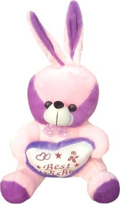 Riya Enterprises Rabbit-2  - 30 cm