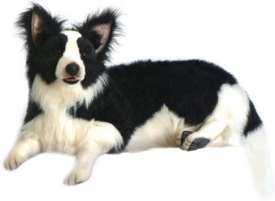 Hansa Border Collie Animal Lying Down(Black)