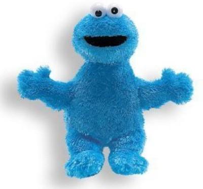 Sesame Street Cookie Monster Plush Cookie Monster Animal (9 Inch)