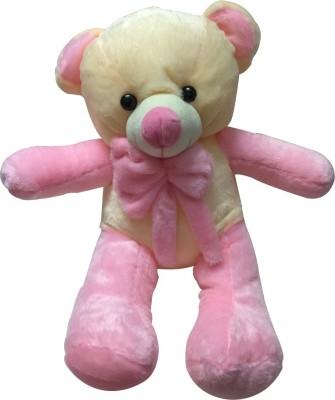 Priyankish Long Pink Teddy Soft Toy Gift Set