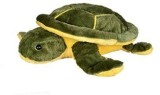 Aayushi Toys Cute Stuffed Tortoise Toy f...