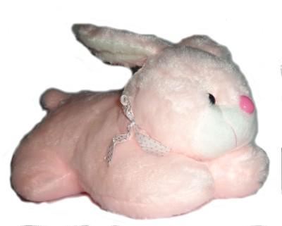 Cuddles Lovely Looking Rabbit  - 27 cm