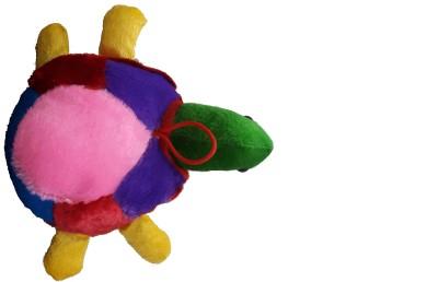 Ekku Tortoise  - 8 inch