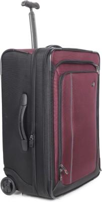 Victorinox Expandable Cabin Luggage(Purple)