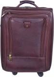 PE Pooja Check-in Luggage - 22 inch (Bro...