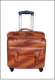 PE POOJA Check-in Luggage - 20 inch (Tan...