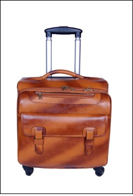 PE POOJA Check-in Luggage - 20