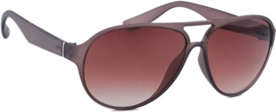 Joe Black JB-705-C2 Aviator Sunglasses(Brown)