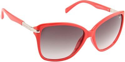 Farenheit 1820 Cat-eye Sunglasses(Brown)