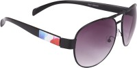 Camerii SOW62 Oval Sunglasses(Black)