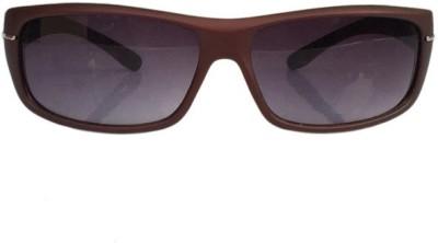 Winsome Deal Wayfarer Sunglasses