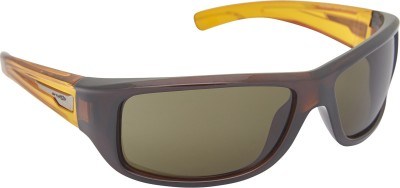 Arnette AN_4137_DRKBRNDRKBRN Rectangular Sunglasses(Brown)