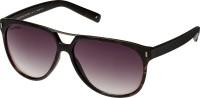 Joe Black JB-571-C3 Aviator Sunglasses(Violet)
