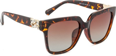 Rafa Hollywood Sunglasses Over-sized Sunglasses