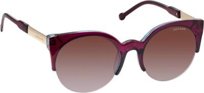 David Blake DBSG586 Cat-eye Sunglasses(Brown)