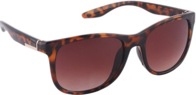 Joe Black JB-707-C2 Wayfarer Sunglasses(Brown)