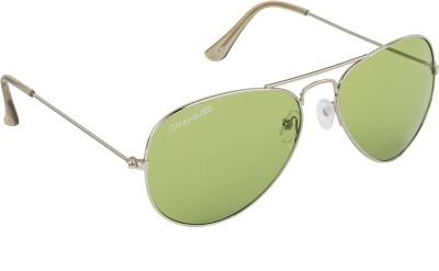 Danny Daze D-603-C5 Aviator Sunglasses