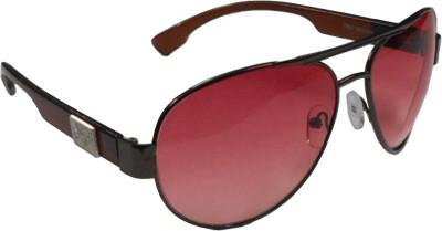 ANUSHEE Aviator Sunglasses