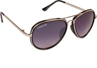 Danny Daze D-75-C6 Aviator Sunglasses(Violet)