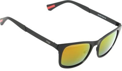 IMAGE Wayfarer Sunglasses
