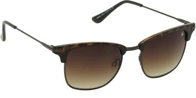 United Colors of Benetton Clubmaster Brown Wayfarer Sunglasses