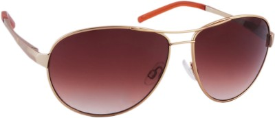 Joe Black JB-700-C2 Aviator Sunglasses(Brown)