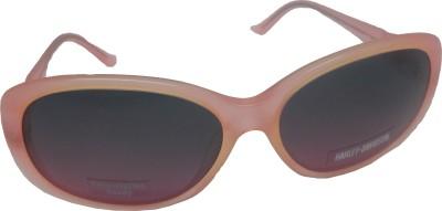Harley Davidson Over-sized Sunglasses