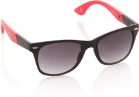 Joe Black JB-593-C2 Wayfarer Sunglasses(Violet)