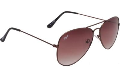 Floyd 028_BRN_LIT_BRN_BRN Aviator Sunglasses(Brown)