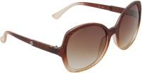 Camerii SCL87 Rectangular Sunglasses(Brown)