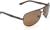 Force F8021 P M.BRW 3BRW Aviator Sunglasses(Brown)