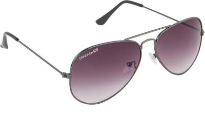 Danny Daze D-604-C6 Aviator Sunglasses(Violet)