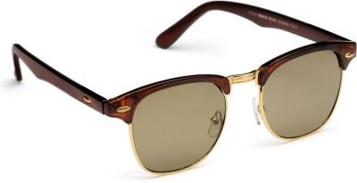 FashBlush FB24014 Wayfarer Sunglasses(Brown)