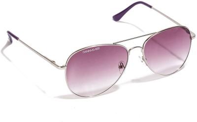 Danny Daze D-700-C10 Aviator Sunglasses(Violet)