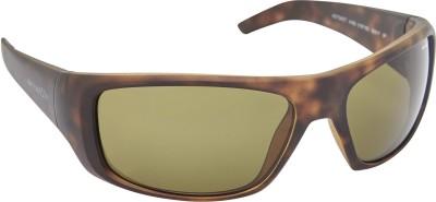 Arnette AN_4182_BRNBRN Rectangular Sunglasses(Brown)