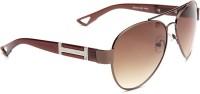 Adine 140br Aviator Sunglasses(Brown)