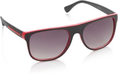 Joe Black JB-487-C2 Rectangular Sunglasses(Violet)