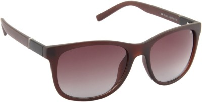 Farenheit 1222-C3 Wayfarer Sunglasses(Brown)