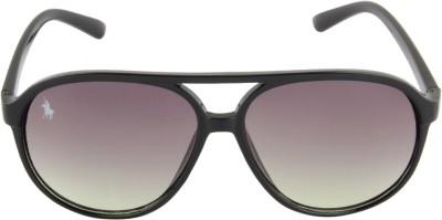 Royal County Of Berkshire Polo Club SNL1414CL-015 Wayfarer Sunglasses