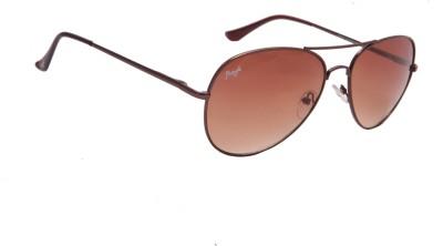 Floyd 2858_BROWN_BROWN Aviator Sunglasses(Brown)
