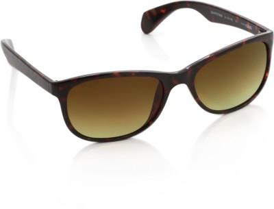 Glares by Titan Wayfarer Sunglasses