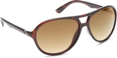 IDEE IDEE S1745 C2 Aviator Sunglasses(Brown)
