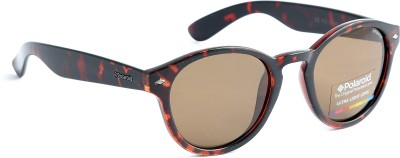 Polaroid PLD1018/S50IGQ3V Round Sunglasses(Brown)