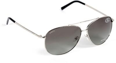 Basics Aviator Sunglasses
