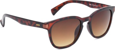 IDEE IDEE S2088 C2 51 Wayfarer Sunglasses(Brown)